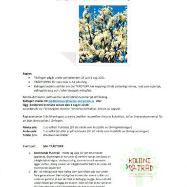 Trädtoppen! Tävling med anledning av att Koloniträdgårdsföreningen fyller 100 år